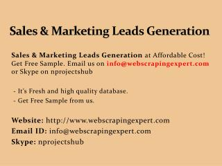 Sales & Marketing Leads Generation