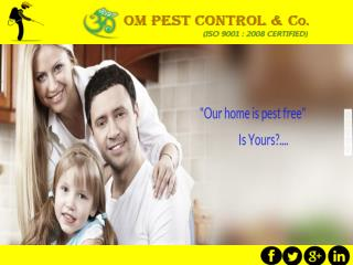 Best Pest Control Company?
