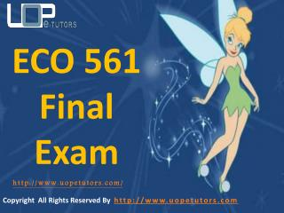 ECO 561 Final Exam Questions & Answers