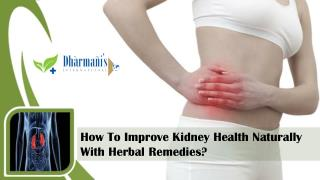 How To Improve Kidney Health Naturally With Herbal Remedies?