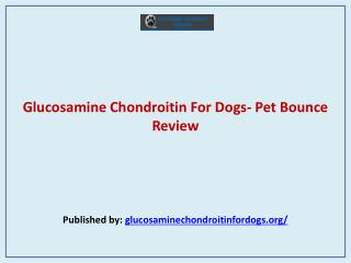 Glucosamine Chondroitin For Dogs- Pet Bounce Review