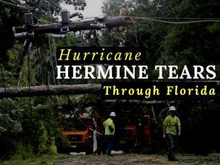 Hurricane Hermine tears through Florida