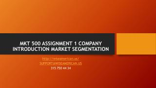 MKT 500 ASSIGNMENT 1 COMPANY INTRODUCTION MARKET SEGMENTATION