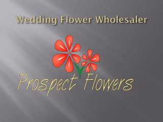 Top 5 things to look for in wedding flower wholesaler