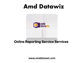 Online Reporting Service