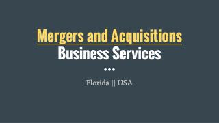 Hire Mergers and Acquisitions Expert In Florida