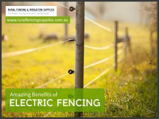 Advantages of Installing Electric Fence