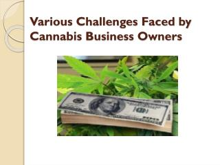 Various Challenges Faced by Cannabis Business Owners