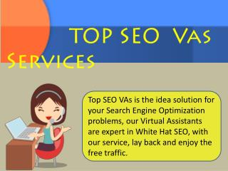 TOP SEO VAs Services