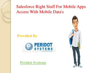 Salesforce Right Stuff For Mobile Apps Access With Mobile Data's