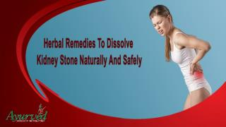 Herbal Remedies To Dissolve Kidney Stone Naturally And Safely
