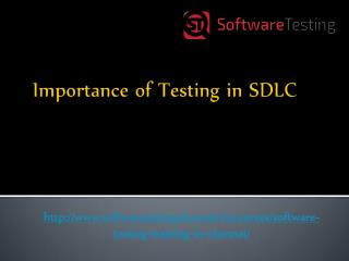 Importance of Testing in SDLC