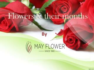 Flowers and their months