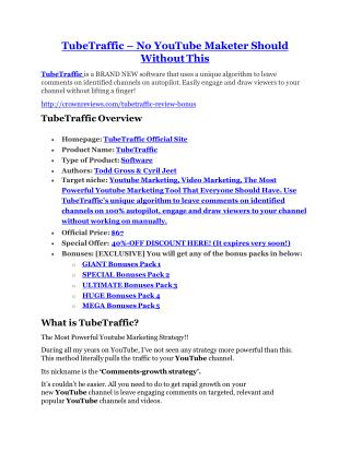 TubeTraffic review in particular - TubeTraffic bonus