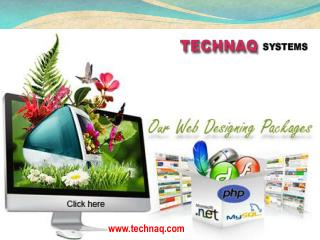 Web Design Company in Delhi
