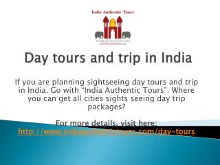 Day tours and trip in India