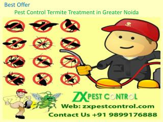 Best Offer- Pest Control Termite Treatment in Greater Noida