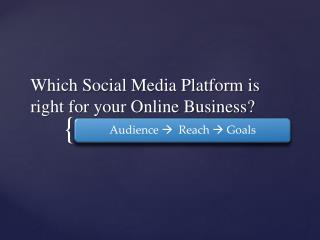 Which Social Media Platform Best For Your Business?