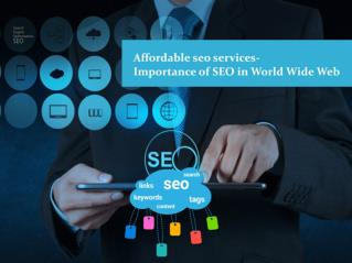Affordable seo services-Importance of SEO in World Wide Web