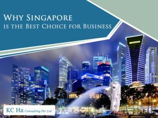 Why Choose Singapore for Business Incorporation