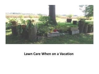 Lawn Care When on a Vacation