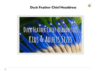 feather headdress for sale