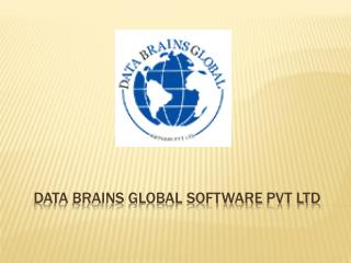 Data Brains Global Software Pvt Ltd