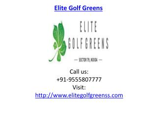 Elite Golf Greens excellent Specifications