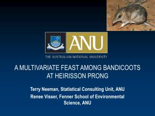 A MULTIVARIATE FEAST AMONG BANDICOOTS  AT HEIRISSON PRONG