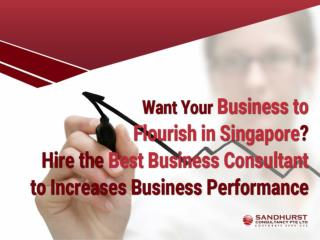 Top Reasons to Hire a Business Consultant in Singapore