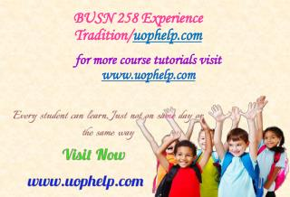BUSN 258 Experience Tradition/uophelp.com
