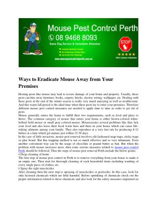 Mouse Pest Control Perth