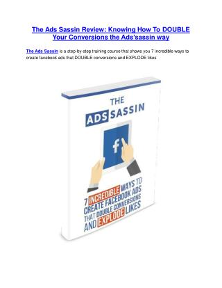 The Ads Sassin review and giant bonus with  100 items