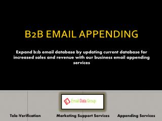 Business Email Appending Services