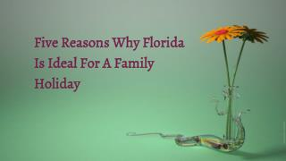 Five Reasons Why Florida Is Ideal For A Family Holiday | Book vista cay resort
