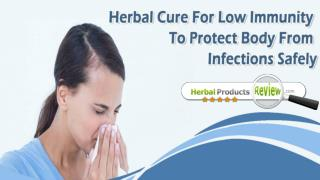 Herbal Cure For Low Immunity To Protect Body From Infections Safely