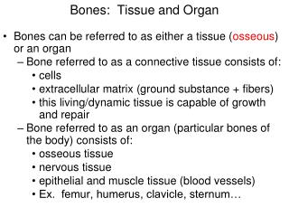 Bones:  Tissue and Organ