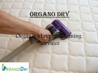 Organic Mattress Cleaning Services | Bed Cleaning Service Delhi