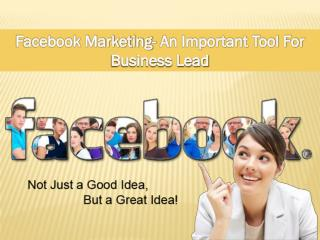 Facebook Marketing- An Important Tool For Business Lead