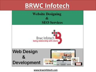Excellent SEO Services Providers in Jaipur, India -BRWC InfoTech