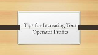 Tips for Increasing Tour Operator Profits