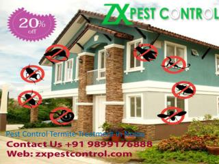 Pest Control Termite Treatment in Noida Call  91 9899176888