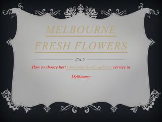 Christmas Flower Arrangements | Christmas Flowers Melbourne