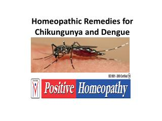 homeopathy treatment for chikungunya