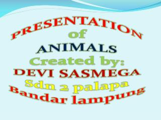 PRESENTATION NAMES OF ANIMALS