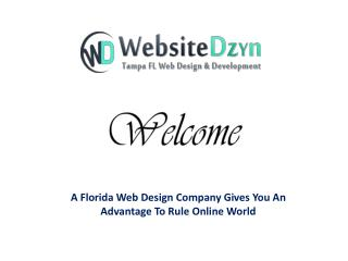 A Florida Web Design Company Gives You An Advantage To Rule Online World