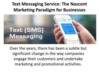 Text Messaging Service: The Nascent Marketing Paradigm for Businesses
