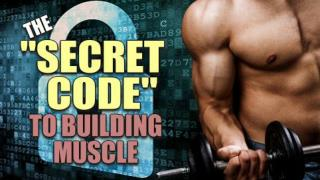 Rapid Muscle Building Secrets