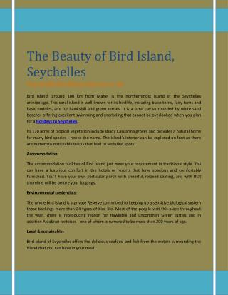 The Beauty of Bird Island, Seychelles