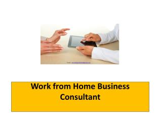 Work from Home Business Consultant